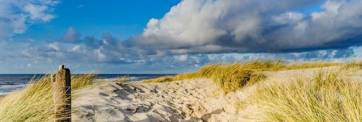 Explore the Dutch Dunes by walking or MTB